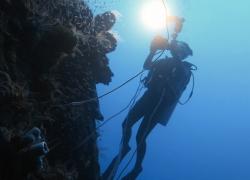 Truk Lagoon - Micronesia